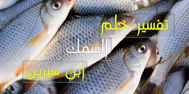صور تفسير حلم السمك الكبير , الحصول علي الخير من حلم السمك