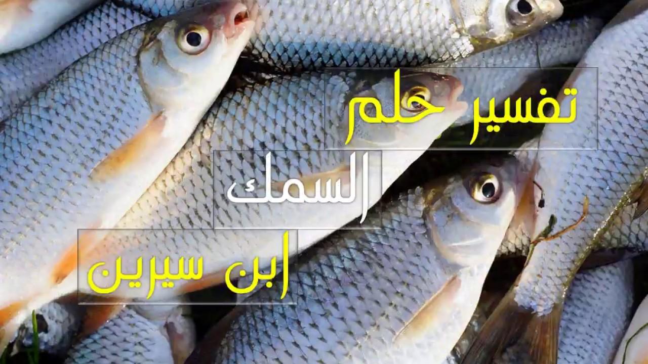صورة تفسير حلم السمك الكبير , الحصول علي الخير من حلم السمك