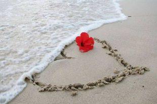 صورة احلى قصة حب , الحب في الملاهي