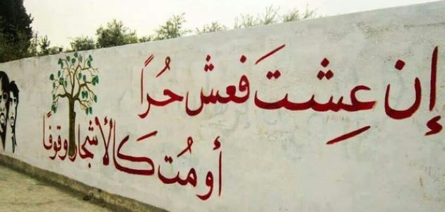 صور قصيدة عن الحرية , الحرية باجمل كلمات تدل عليها