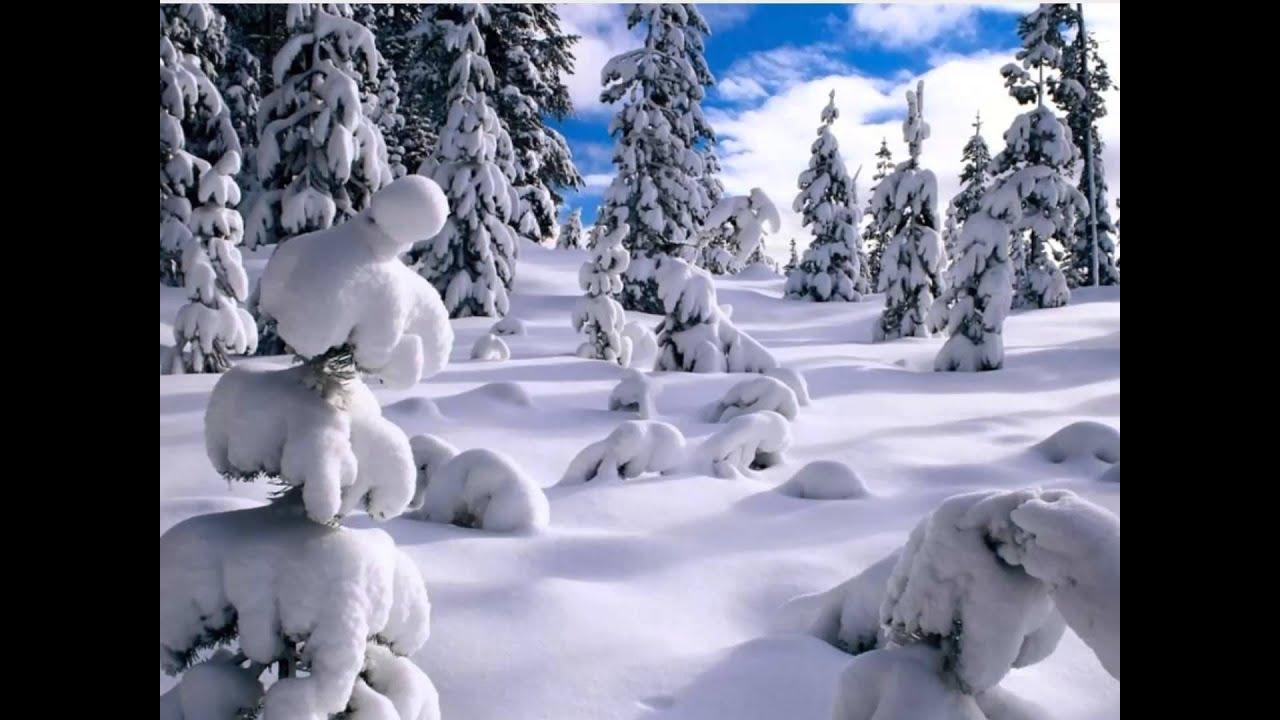 صورة اجمل صور شتاء , روعه فصل الشتاء