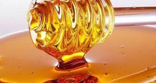 صور العسل في الحلم , هل يبقى العسل عسل فى المنام
