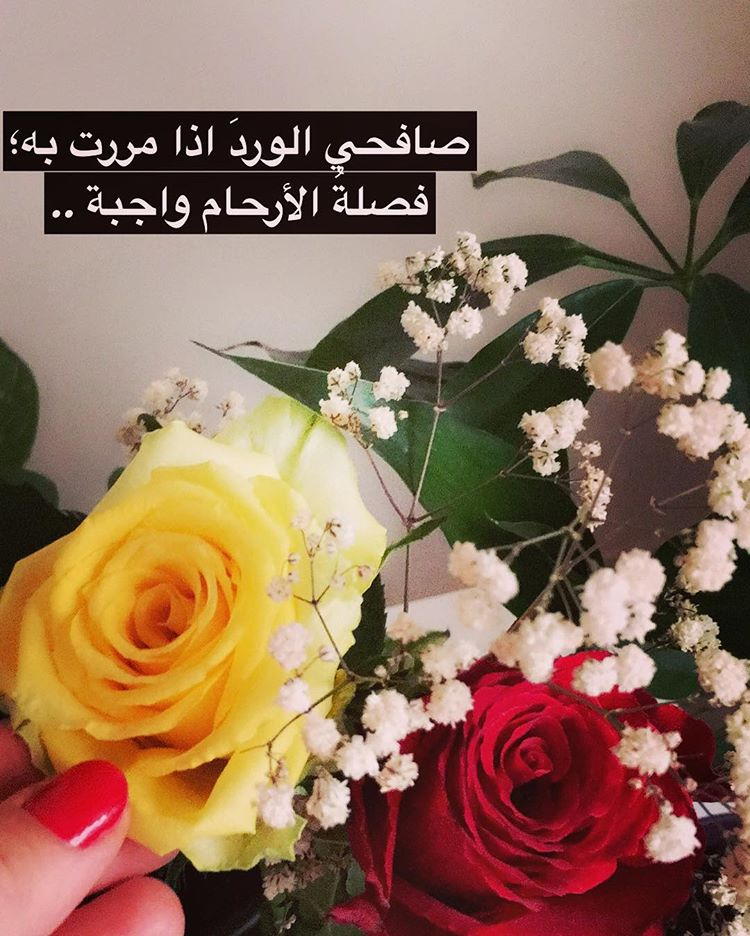 صورة اجمل ما قيل في الورد من شعر , اهديها ورد و اشعار