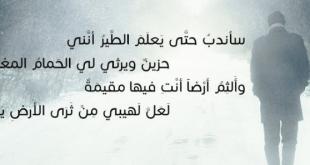 شعر وكلام حزين , معاناتك فى اشعار و كلمات