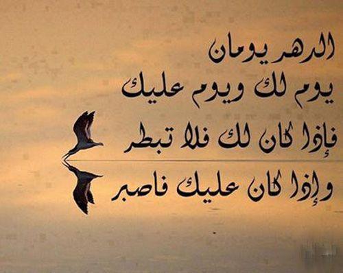 صورة حكم و اشعار , تعلم الحياة بدون تجارب