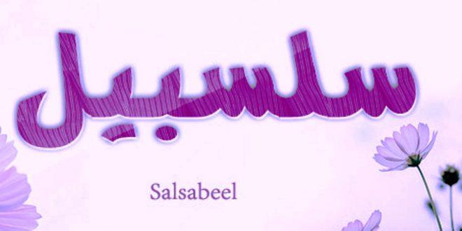 صورة معنى اسم سلسبيلى , المعنى الصحيح لاسم سلسبيلى