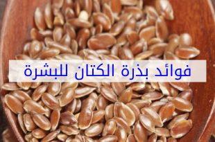 صورة فوائد بذور الكتان للبشرة , معقول كل الفؤائد دى فى بذر الكتان