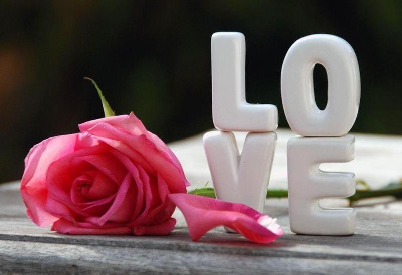 صورة ورود حب وغرام , هدايا جميلة و ورود