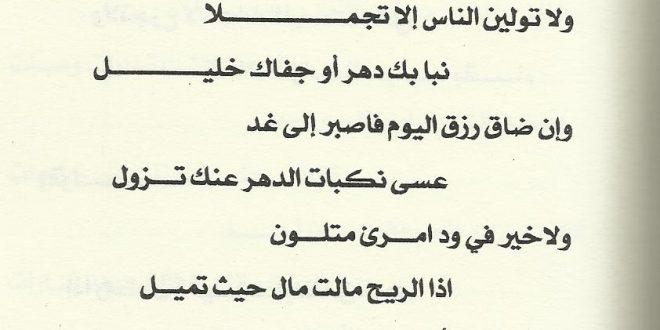 صورة شعر الشافعي عن الصديق , المرء على دين خليله