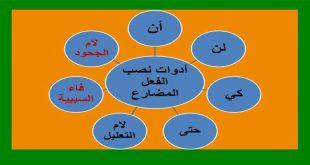 صورة ما هي حروف النصب , ادوات النصب في اللغة العربية
