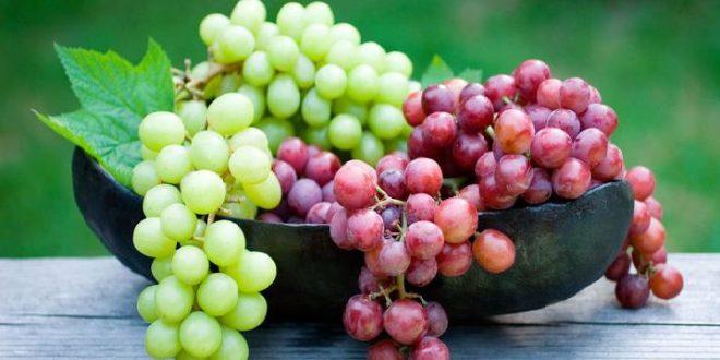 صورة تفسير رؤية العنب في المنام , العنب وهل هو خير او شر فى منامى
