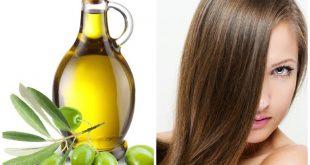 فايدة زيت الزيتون للشعر , هل يتاثر الشعر عند استخدام زيت الزيتون