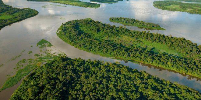 صورة ما هو اعرض نهر في العالم , معلومات غريبه و عجيبه عن نهر الامازون
