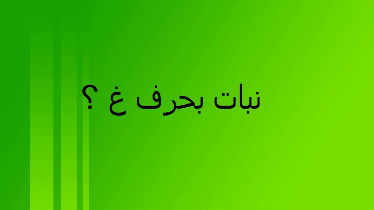 كلمات بحرف الغين من ثلاث حروف لم يسبق له مثيل الصور Tier3 Xyz