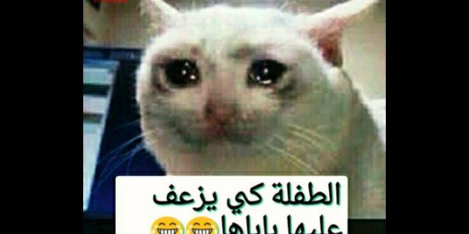 صورة تعليقات فيس بوك جزائرية , تعرف علي اغرب التعليقات