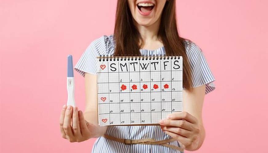 صورة الايام التي يحدث فيها الحمل , ما عقول كل دى معلومات عن ايام الحمل