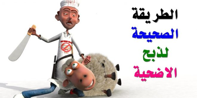 صورة طريقة ذبح الخروف على الطريقة الاسلامية , تعرف علي طريقة الذبح الصحيحة