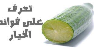 صورة فوائد اكل الخيار , افيد الخضروات وارخصها تعرف عليها