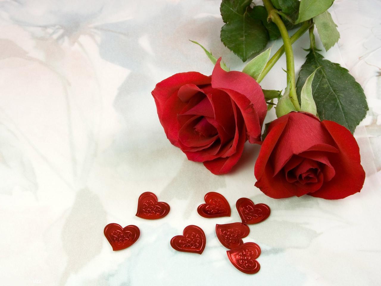 صورة بوستات ورد احمر , احلى كلمه مع ارق وردة