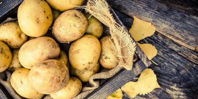صورة تفسير حلم البطاطس , البطاطس فى المنام وما رسالتها