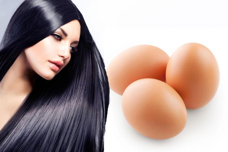 صورة خلطات شعر بالبيض , فوائد البيض لتنعيم الشعر وتطويله