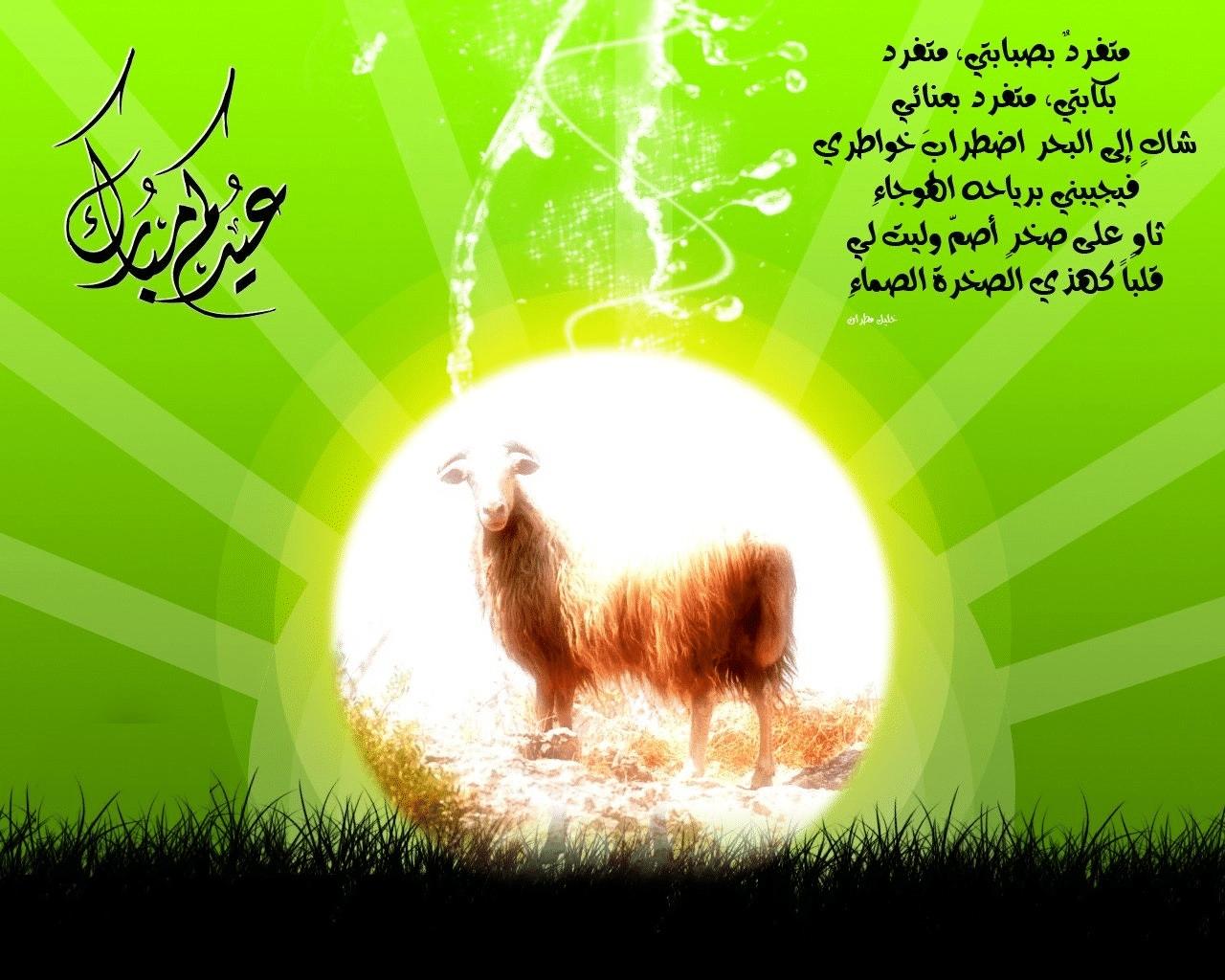 صورة اجمل الصور بمناسبة عيد الاضحى المبارك , اجمل مناظر تظهر بهجه العيد 6840 1