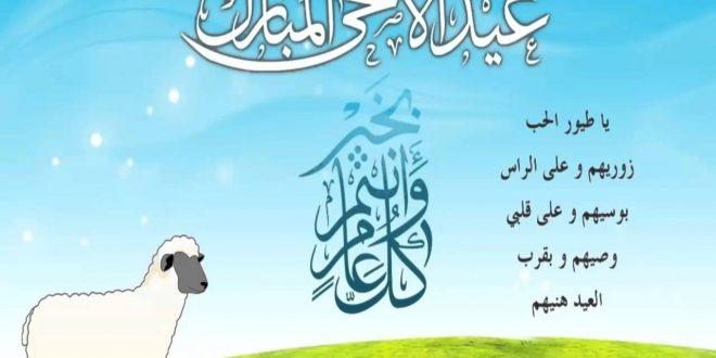 صورة اجمل الصور بمناسبة عيد الاضحى المبارك , اجمل مناظر تظهر بهجه العيد