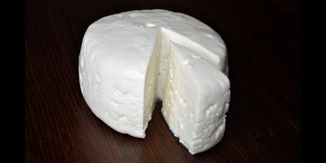 صورة كيف يصنع الجبن , تعملى معنا طريقه عمل الجبنه البيضه