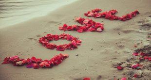 صورة صور معبرة حب , عبر عن حبك بالصور