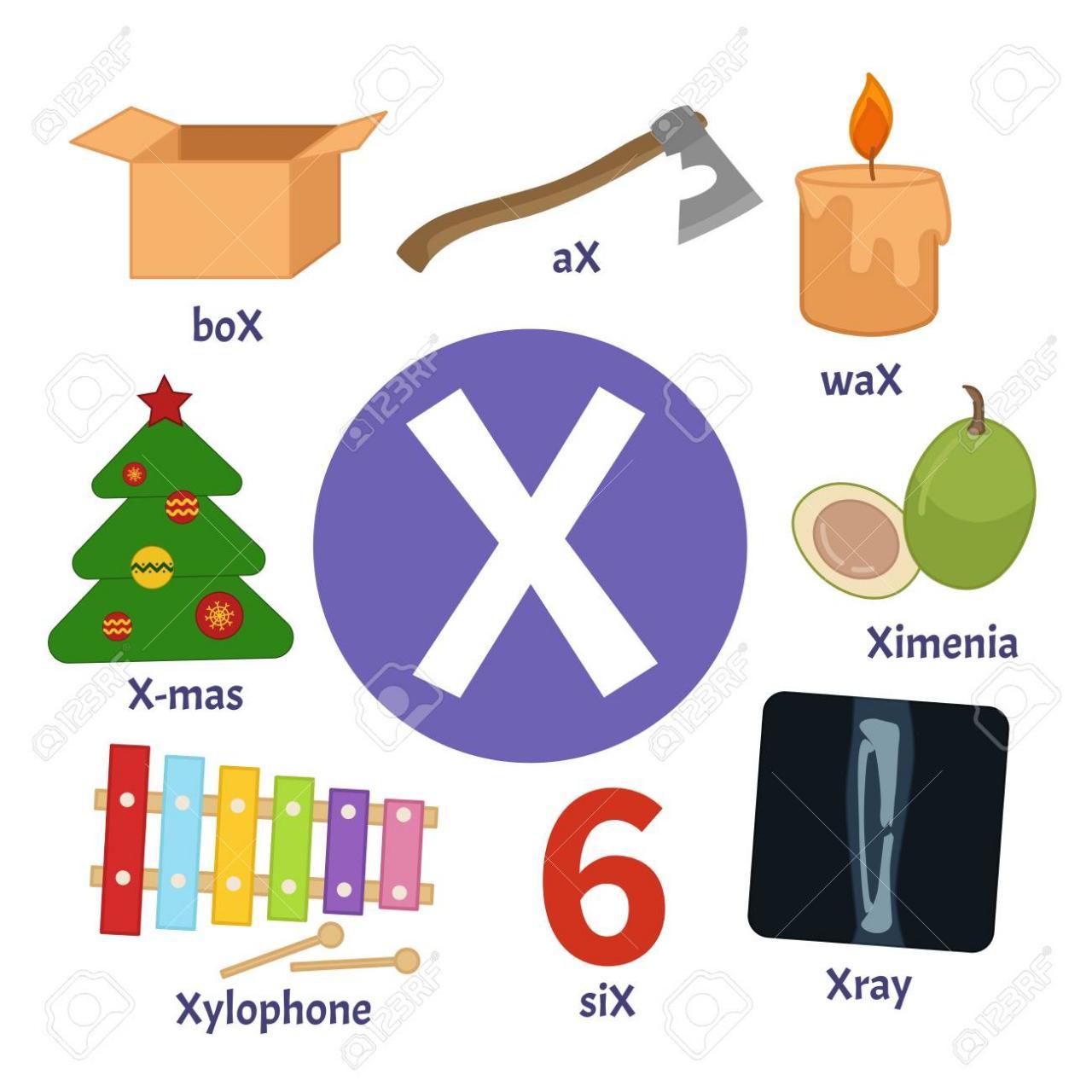 كلمات بحرف X اكثر الكلمات الشائعه لاخر الحروف الانجليزيه حنين الذكريات