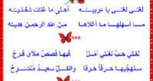 صورة قصيدة قصيرة عن اللغة العربية , قول الشاعر فى حب اللغة العربية ومعانيها