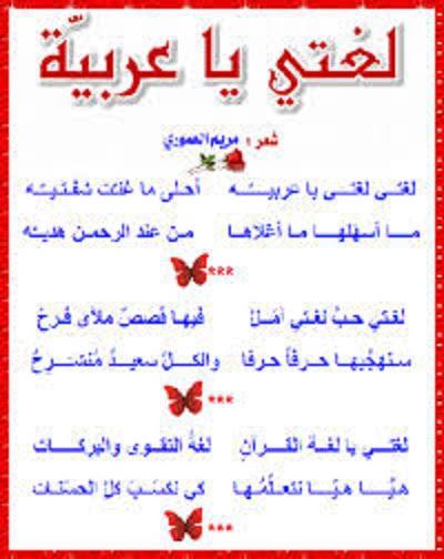 عبارات عن اللغة العربية 8