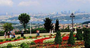 تل العرائس تركيا